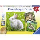 Ravensburger Puzzle Roztomilý zajačik 3x49