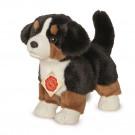 Teddy Hermann Plyšový psík bernský salašnícky pes šteňa, 23cm