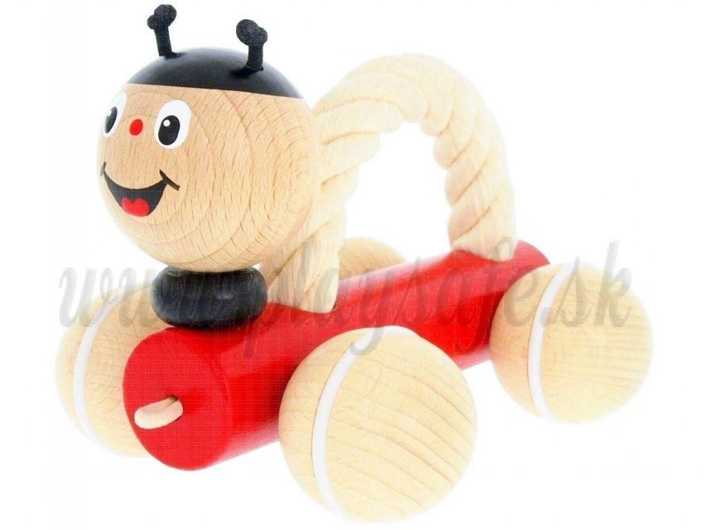 Greenkid Wooden Pushing Toy with Rope Ladybug Tammy