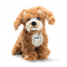 Steiff Soft toy dog Curlie Cockapoo, 24cm